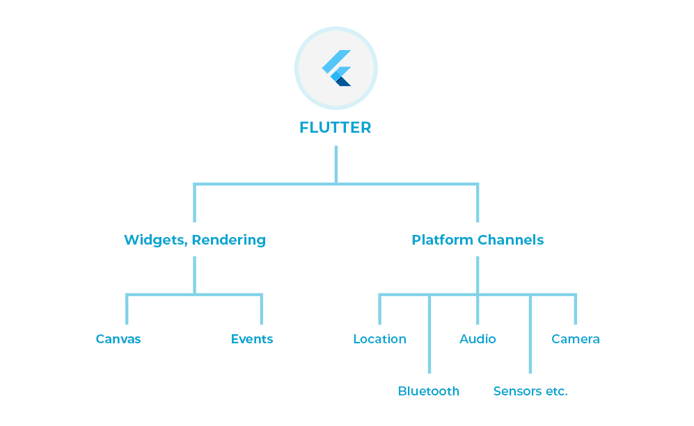 Why should Developer Consider Flutter App Development in 2019